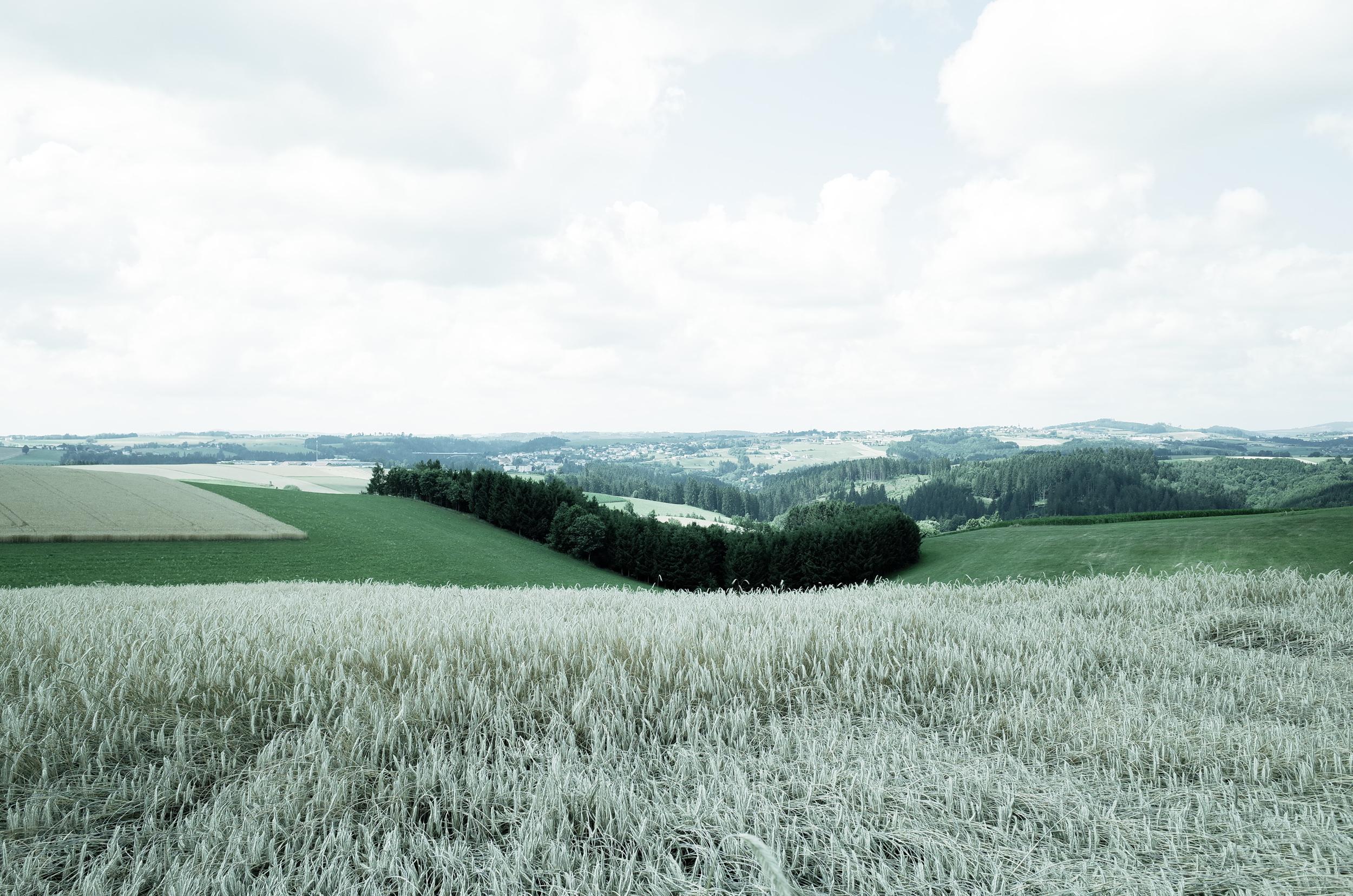 Granitpilgern Felder