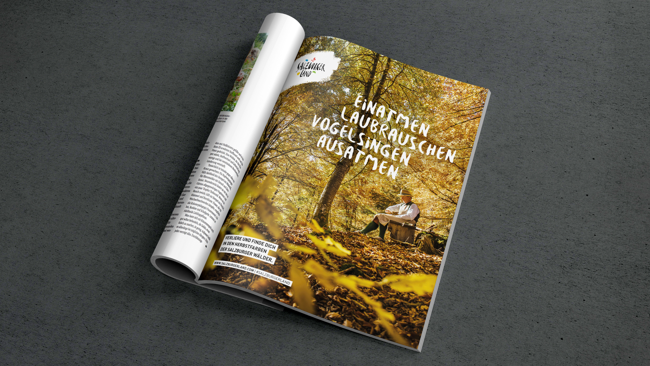 Ref Slt 1910 2560X1440 Magazin