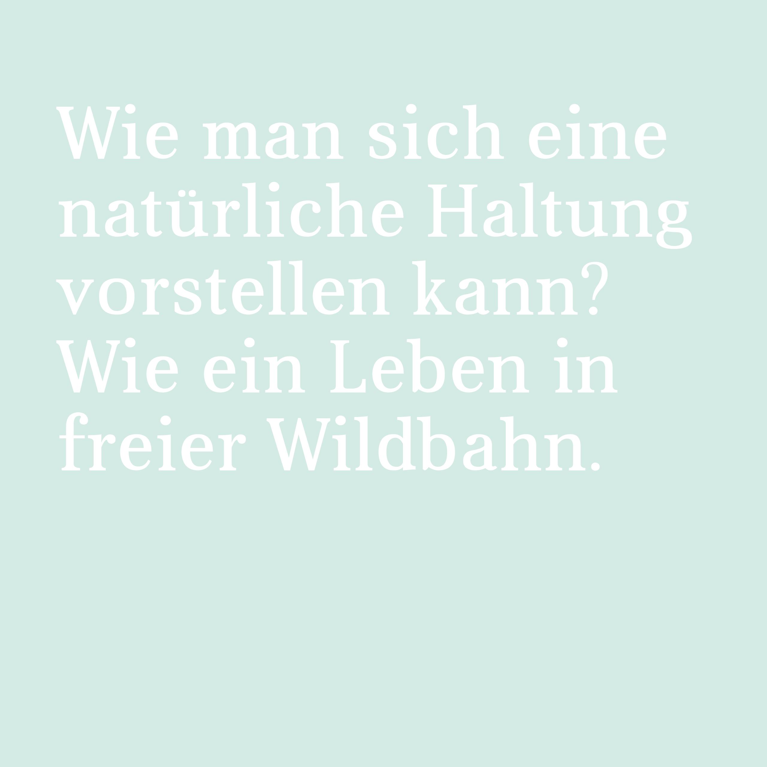 Ref vicha 10 Spruch freie Wildbahn RZ