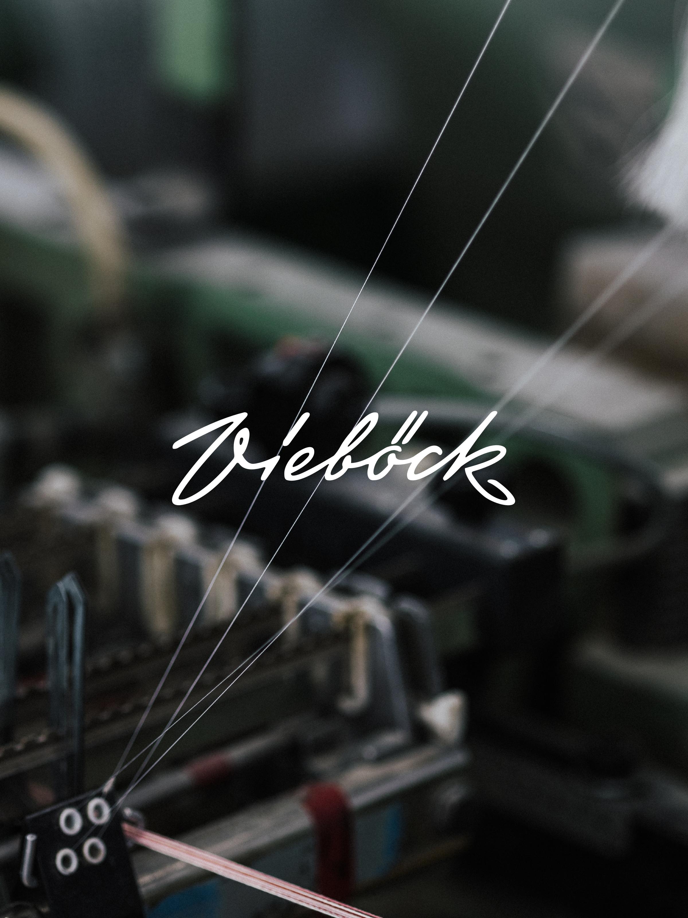Ref vieboeck hero faden portrait 2x